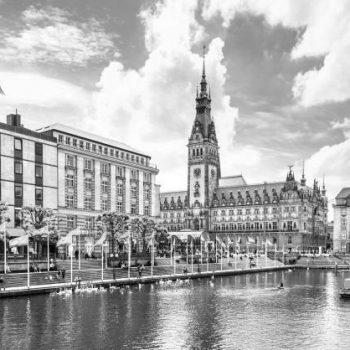Hamburg_Rauschrebellen